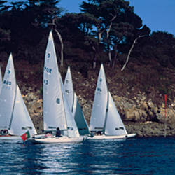 Boats in regatta, Baie De Douarnenez, Finistere, Brittany, France