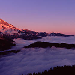Sea of clouds with mountains in the background, Mt Rainier, Pierce County, Washington State, USA