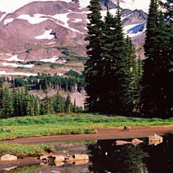 Reflection of a mountain in a lake, Mt Rainier, Pierce County, Washington State, USA