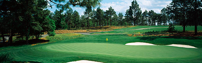 Golf course, Pine Needles Golf Course, Southern Pines, Moore County, North Carolina, USA