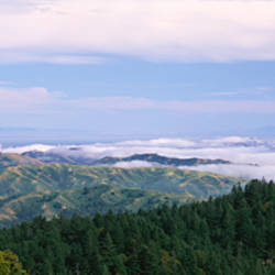 View of San Francisco from Mt Tamalpais, Marin County, California, USA