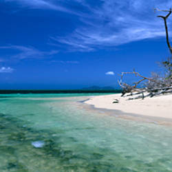 Beach, Green Island, Queensland, Australia