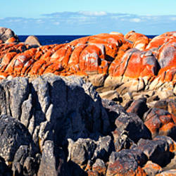 Rock formations on a landscape, Eddystone Point, Bay of Fires National Park, Tasmania, Australia