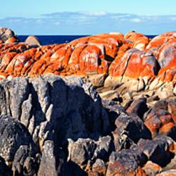 Rock formations on a landscape, Eddystone Point, Bay of Fires National Park, Tasmania, Australia