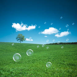 Soap bubbles floating over a field