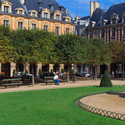 Fountain and trees in front of a building, Place Des Vosges, Paris, Ile-De-France, France