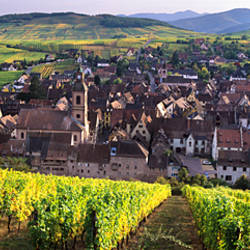 High angle view of a village, Riquewihr, Alsace, France