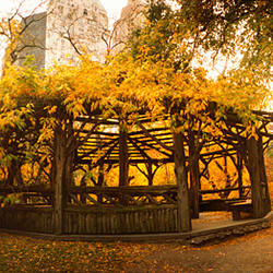Gazebo in a park, Central Park, Manhattan, New York City, New York State, USA
