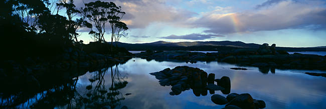 Silhouette of rock formations and trees at dusk, Binalong Bay, Bay of Fires National Park, Tasmania, Australia
