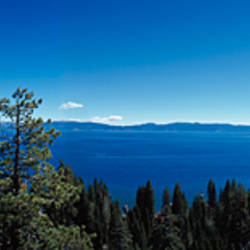 Woman sitting at the lakeside, Lake Tahoe, California, USA