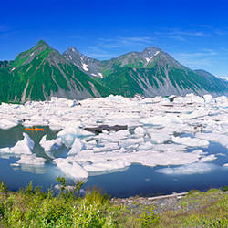Icebergs floating in the lake, Bear Glacier Lake, Kenai Fjords National Park, Alaska, USA