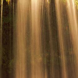 Low angle view of a waterfall, Dunsmuir, Siskiyou County, California, USA