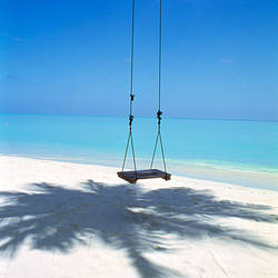 Swing on the beach above palm tree shadow