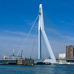 Bridge across a river, Erasmus Bridge, Meuse River, Rotterdam, Netherlands