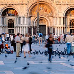 Tourists in front of a cathedral, St. Mark's Basilica, Piazza San Marco, Venice, Italy