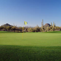 Golf flag in a golf course, Troon North Golf Club, Scottsdale, Maricopa County, Arizona, USA