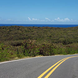 Road passing through a landscape, U.S. Virgin Islands Highway 107, Salt Pond Bay, St. John, US Virgin Islands