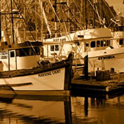 Fishing boats in the sea, Morro Bay, San Luis Obispo County, California, USA