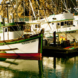 Fishing boats in the sea, Morro Bay, San Luis Obispo County, California, USA