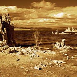 Tufa rock formations at the lakeside, Mono Lake, California, USA