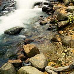 Stream flowing through rocks, Lee Vining Creek, Lee Vining, Mono County, California, USA