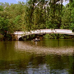 Bridge across a lake, Central Park, Manhattan, New York City, New York State, USA