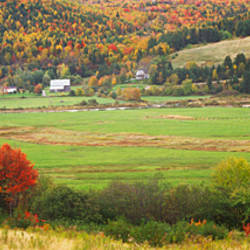 Cape Breton Highlands near North East Margaree, Nova Scotia, Canada