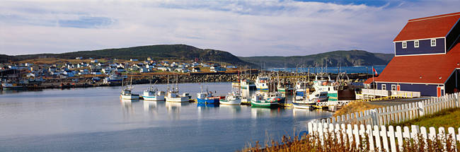 Boats in a harbor, Bonavista Harbour, Newfoundland, Newfoundland And Labrador, Canada
