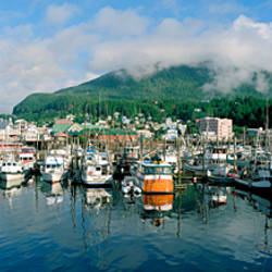 Ships and boats moored at a harbor, Ketchikan Harbor, Ketchikan, Alaska, USA