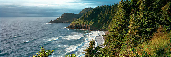 High angle view of a coastline, Heceta Head Lighthouse, Oregon, USA