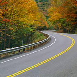 Road passing through a forest, Winding Road, New Hampshire, USA