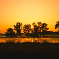 Silhouette of trees at the lakeside, Finger Lakes, Montezuma National Wildlife Refuge, New York State, USA
