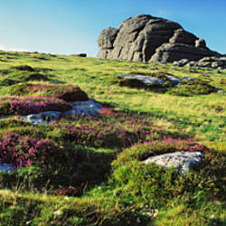Low angle view of rocks on a landscape, Haytor, Dartmoor, Devon, England