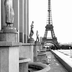 Statues at a palace with a tower in the background, Eiffel Tower, Place Du Trocadero, Paris, Ile-De-France, France