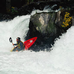 Man kayaking in a river, Husam Falls, White Salmon River, Washington State, USA