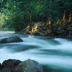 River passing through a forest, Nantahala Falls, Nantahala National Forest, North Carolina, USA