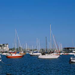 Boats in a lake, Toronto Marina, Toronto, Ontario, Canada