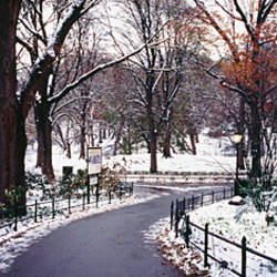Walkway in a park, Central Park, Manhattan, New York City, New York, USA