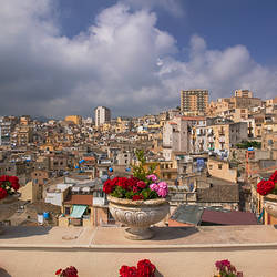 Potted plants on the ledge of a balcony, Termini Imerese, Palermo, Sicily, Italy