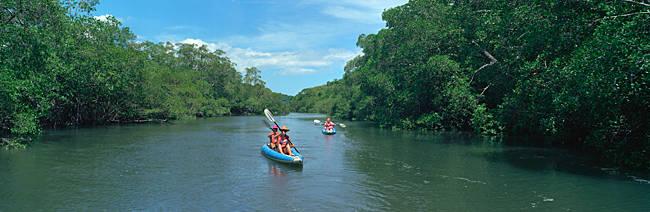 Group of people kayaking in coastal waterway, Costa Rica