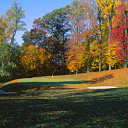 Trees on a golf course, Hercules Country Club, Delaware, USA