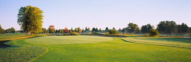 Trees on a landscape, Fairfax National Golf Club, Centreville, Virginia, USA