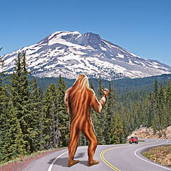Rear view of a sasquatch hitchhiking, Oregon, USA