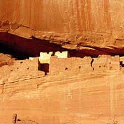 Tree in front of the ruins of cliff dwellings, White House Ruins, Canyon de Chelly National Monument, Arizona, USA