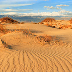 Sand dunes in a national park, Mesquite Flat Dunes, Death Valley National Park, California, USA