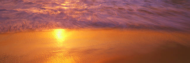 Reflection of sun in water on the beach, La Jolla, California, USA