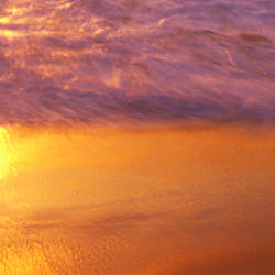 Reflection of sun in water on the beach, La Jolla, California, USA
