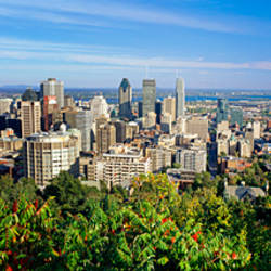 High angle view of a cityscape, Parc Mont Royal, Montreal, Quebec, Canada