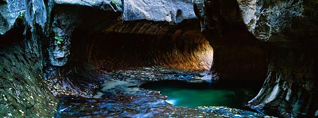 Rock formations at a ravine, North Creek, Zion National Park, Utah, USA