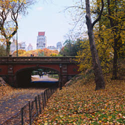 Bridge in a park, Central Park, Manhattan, New York City, New York State, USA